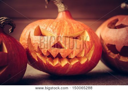 Halloween pumpkins in a row on dark rustic background