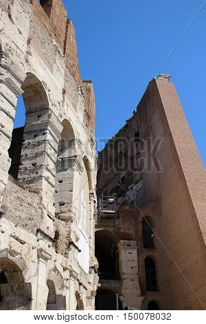 The Colosseum in Rome, side view. Coloseum in evening.