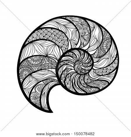 Seashell nautilus. Sea shell set engraved vector illustration isolated on white background. Doodle sea shell. Marine life ornamental animal