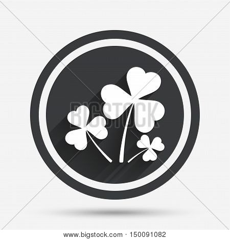 Clovers with three leaves sign icon. Saint Patrick trefoil shamrock symbol. Circle flat button with shadow and border. Vector