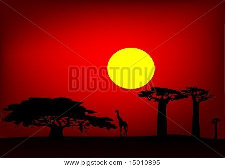 Africa Sunset - Vector