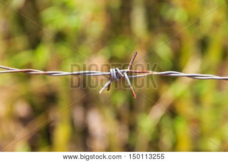 close up of barbed fence on blur background