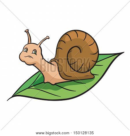 Snail crawling on the green leaf. Color vector illustration on a white background