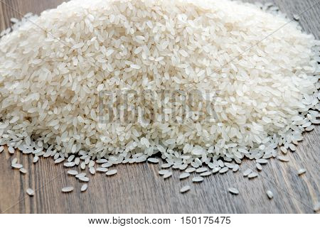 Rice - Cereal Plant, Rice - Food Staple, Cereal Plant, Directly Above
