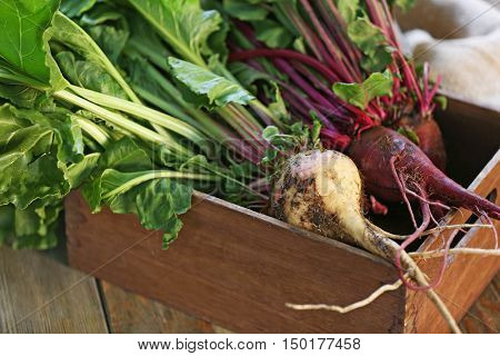 Young beets in wooden box