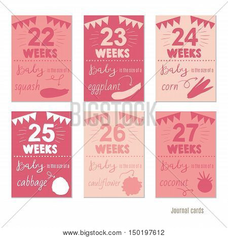 pregnancy weeks Vector design templates for journal cards, Pregnancy stages, trimesters and birth, pregnant woman and baby. Infographic elements
