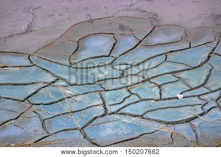 Close up in cracked earth salt marshes