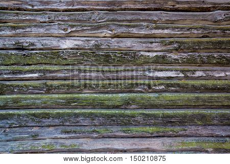 Part of the old wooden frame covered with lichen. Background. Texture