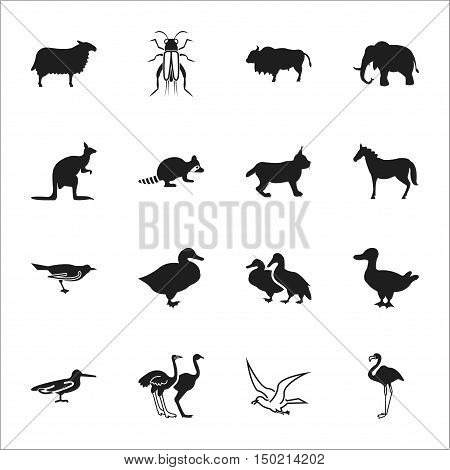 animal, bird 16 black simple icons set for web design