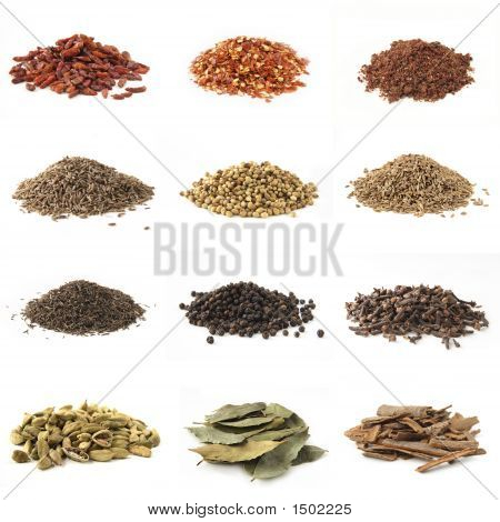 Piles Of Various Kinds Of Spices On White