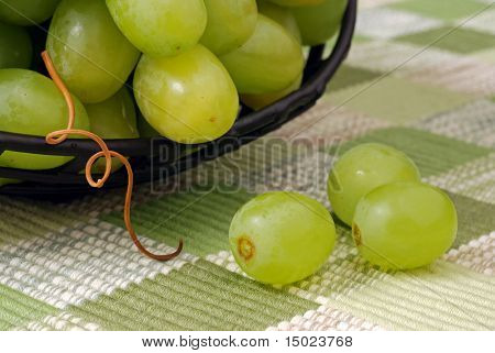 Macro still-life of green grapes in a decorative black bowl with tendril leading down to 3 additional grapes on the color coordinated placemat.