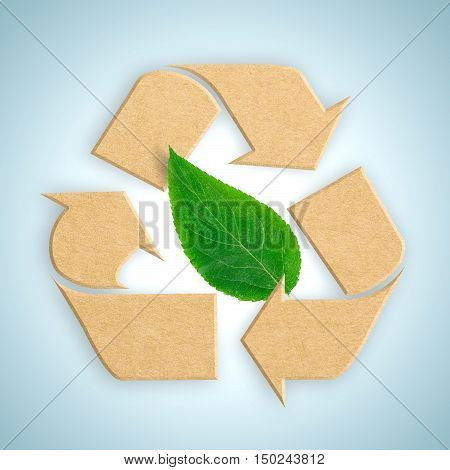 Recycle logo from recycled cardboard with green leaf