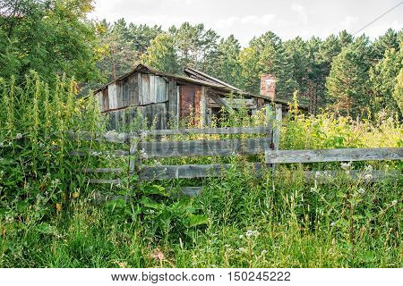 old abandoned wooden house on sunny summer day