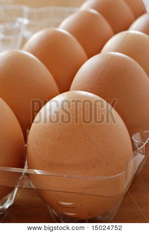 Fresh brown eggs in plastic carton.  Macro with shallow dof.  Selective focus on front egg.