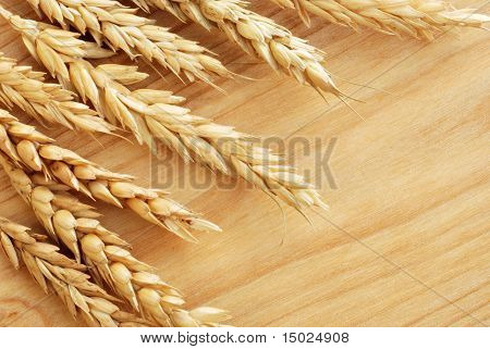 Wheat spikes on  wooden cutting board with copy space