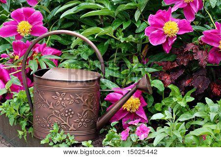 Bronze Metall Gießkanne im Garten des schönen, frisch bewässerten Blüten.