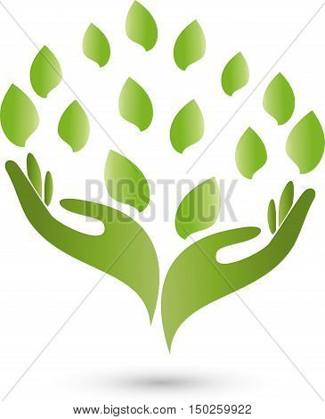 Two hands, leaves in green, medical practitioners logo