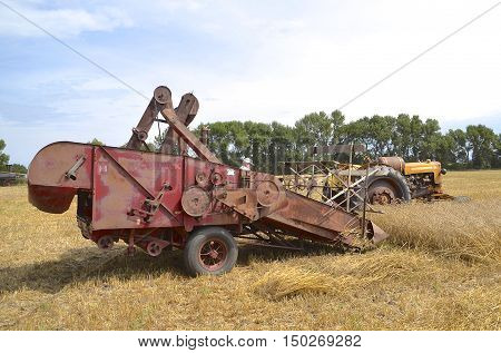 ROSHOLT, SOUTH DAKOTA, August 21, 2015: A Minneapolis Moline tractor and McCormick  are demonstrating combining at the annual Rosholt Area Threshing Bee held the third full weekend of August.