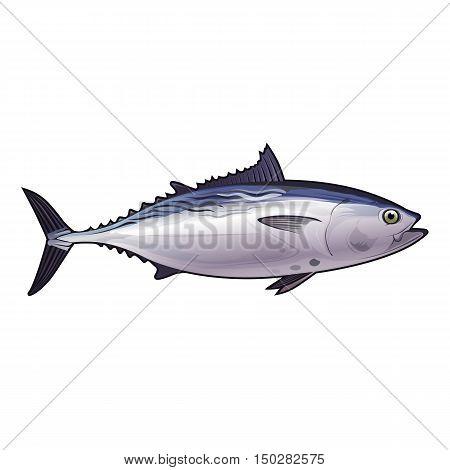 Tuna, isolated raster illustration on white background