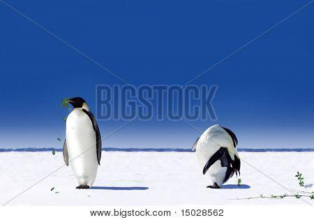 Globale Erwärmung in der Antarktis - nach der Pinguine zu realisieren, was globale Erwärmung bedeutet, sie beginnen zu wo
