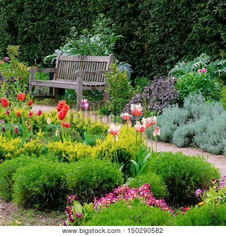 English garden with a walk path leading to empty bench square composition