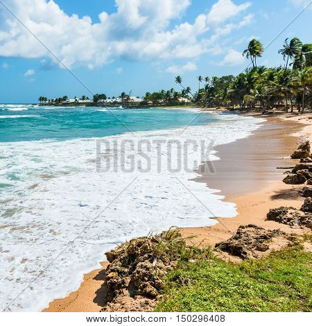 Empty tranquil tropical beach Tobago Caribbean West Indies