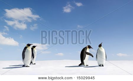 Emperor Penguin gets rejected by another emperor Penguin