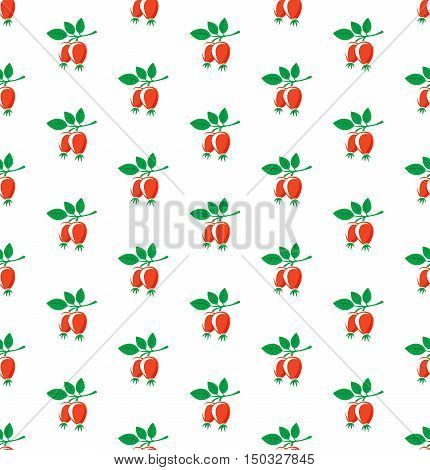 Rosehip seamless pattern. Briar symbols on white background.
