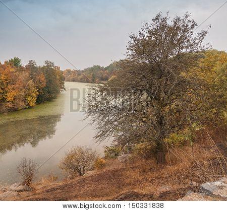 Autumn evening on Mount Paly near the river Ros in the arboretum Alexandria Belaya Tserkov