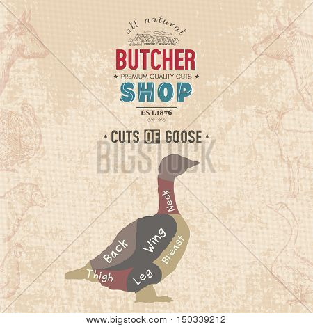 Cuts of goose. Butcher shop retro poster scheme and diagram - Goose. Vintage hand drawn vector Illustration