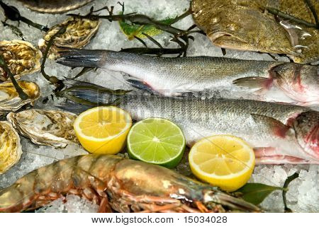 fresh frozen fish with oysters, lobster and lemons in ice