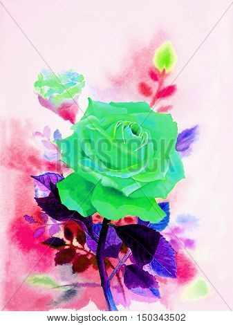 Watercolor original realistic painting green color of rose flower and emotion in white background