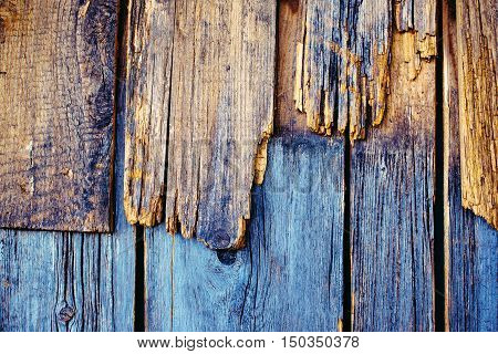 Rough weathered wood texture obsolete wooden planks