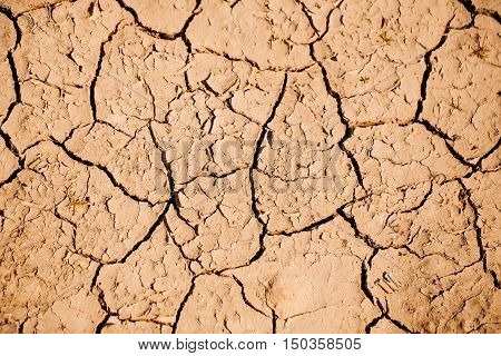 Dry Soil With Cracked Surface
