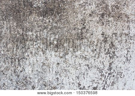 Cement or Concrete wall texture and background for any design