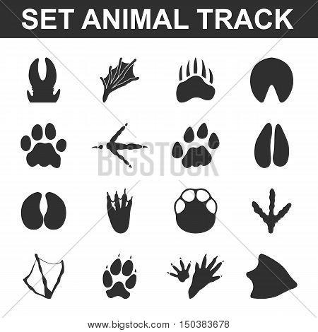 Animal tracks set 16 black simple icons. Animal print icon design for web and mobile device.