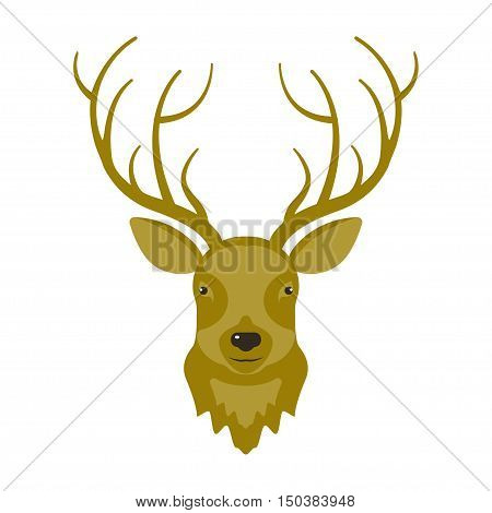Illustration of reindeer head in modern flat design. Hunters trophy of Cervine muzzle. Shot down deer. Vector eps