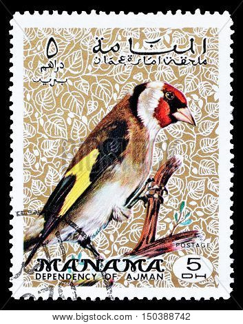MANAMA - CIRCA 1970 : Cancelled postage stamp printed by Manama, that shows European Goldfinch.