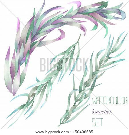 A floral set with the isolated watercolor branches with the green and purple leaves, hand-drawn on a white background, for self-compilation of the bouquets and ornaments