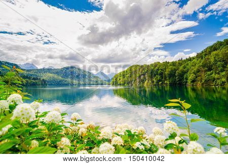 The Alpsee is a lake in Bavaria, Germany. It's located near Neuschwanstein and Hoshenschwangau castles.