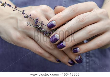 Female hand with purple nail design holding lavender