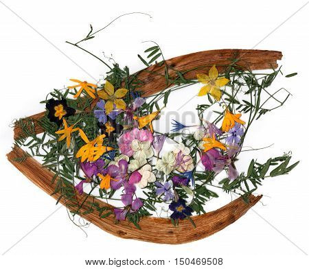 application a bouquet of dried pressing bright flowers and small delicate sweet peas yellow celandine multicolor royal Aquilegia Columbine flower long stiff brown iris leaves in the form of eye