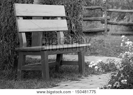 wooden bench in the garden autumn flowers park path