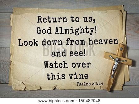 TOP-1000.  Bible verses from Psalms. Return to us, God Almighty! Look down from heaven and see! Watch over this vine