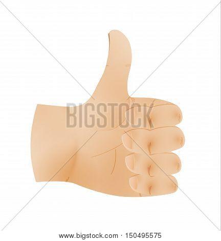 Human Hand Shows Thumb Up