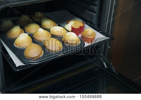 View of baked fresh cupcakes on tray in oven with open door