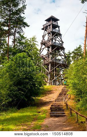 wooden watchtower in forest at sunny day
