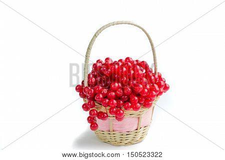 Red Berries Of Guelder Rose In Small Wicker Basket