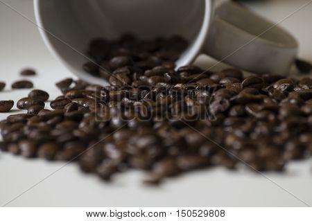 Blick auf geröstete Kaffeebohnen vor einer Tasse