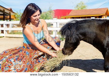 Beautiful girl feeding the straw pony on the farm.